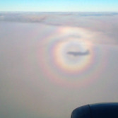 A multi-ring glory surrounds an aircraft's shadow