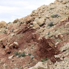 Fold hinge in Moenkopi Formation