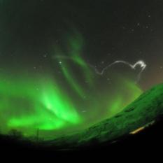 Soaring through the aurora