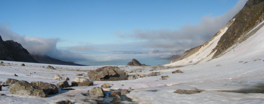 Friedrichbreen glacier