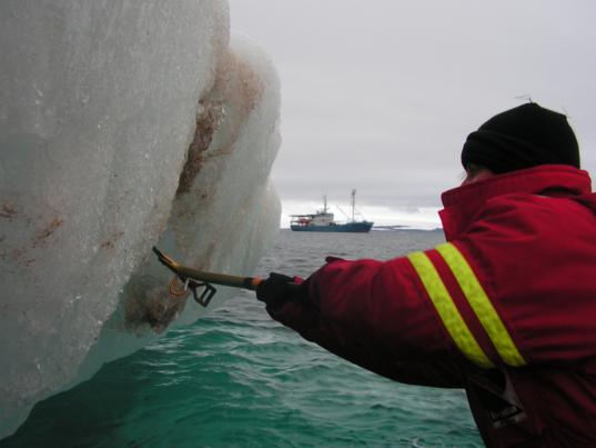 Sampling the iceberg