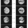 Seasonal developments of the dark markings on Mars, 1907-1956
