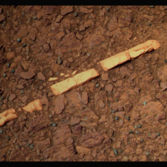 Homestake, Opportunity sol 2769