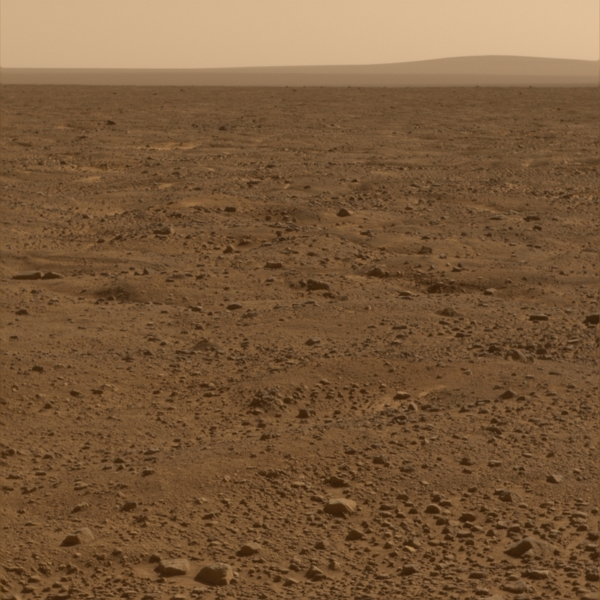 Polygons and distant hills at the Phoenix landing site