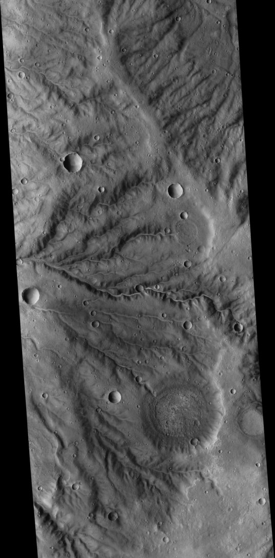 Noachian valley networks near Newcomb Crater, Mars