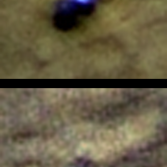 Phoenix lander before and after a Martian winter
