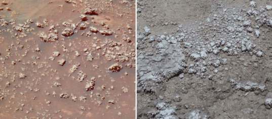 Mars vs. Earth