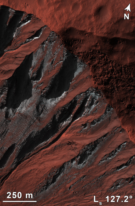 Frosted gullies on Mars