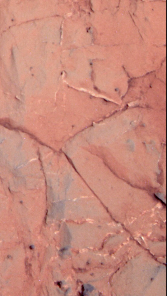 Gypsum veins at the Ortiz outcrop