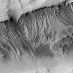 Gullies in Asimov Crater