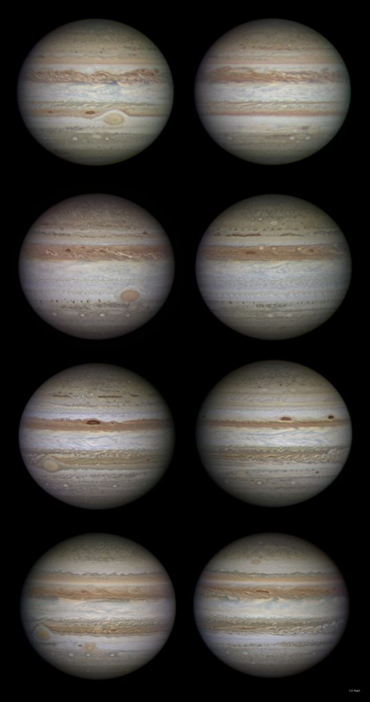 Jupiter's changing face, 2009-2012