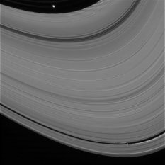 Pan and Daphnis make waves in the rings
