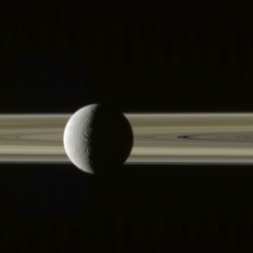 Rhea on the rings with Prometheus and Janus