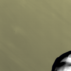 Cassini's March 3, 2010 Helene flyby