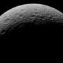 Crescent Rhea
