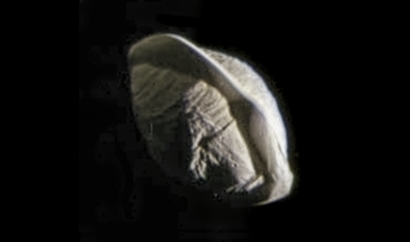 Pan imaged by Cassini