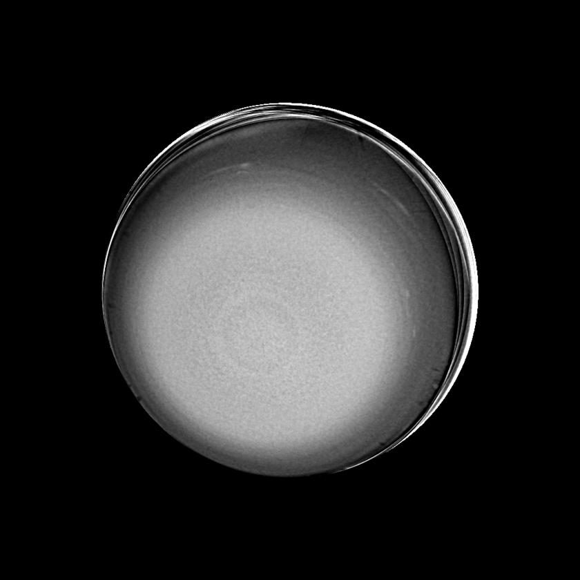 Uranus (contrast stretched)