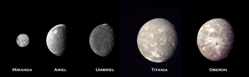 Voyager 2 images of the five larger moons of Uranus