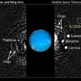 S/2004 N1, a moon of Neptune