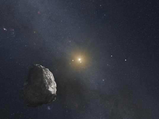 PT1, the potential target for New Horizons after Pluto