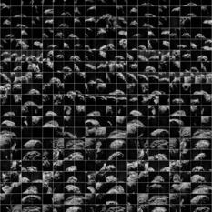 Rosetta Navcam data: MTP 010