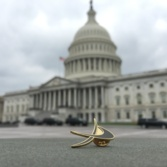 The Planetary Society pin in front of the U.S. Capitol