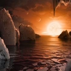 Artist concept of the surface of TRAPPIST-1f