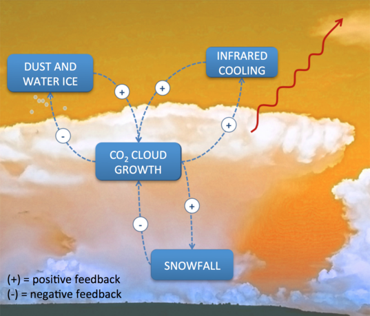 Feedback processes controlling carbon dioxide snowfall in the polar winter of Mars
