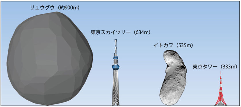 The size and shape of Ryugu