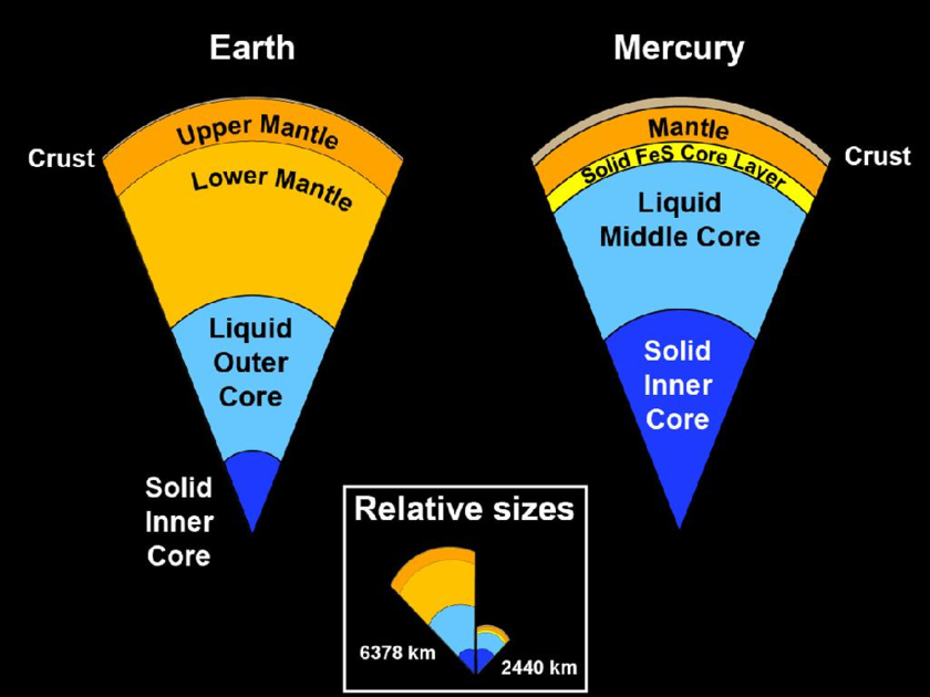 Comparing the interiors of Earth and Mercury