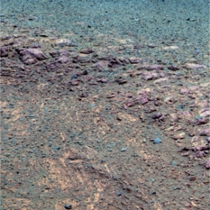 The scarp in false color