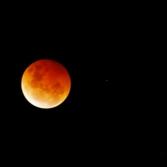 Australian Red Moon