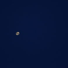 Weather Balloon Through Telescope