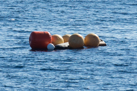 IXV waiting for recovery