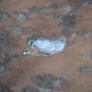 Hayabusa sample return capsule sitting in the Woomera desert, Australia