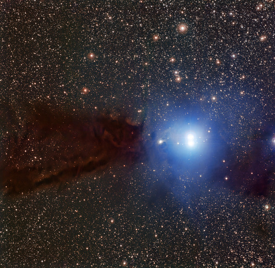 The Lupus 3 dark cloud and associated hot young stars