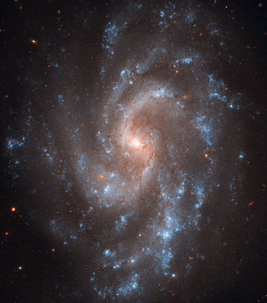 Galaxy NGC 5584 from Hubble WFC3
