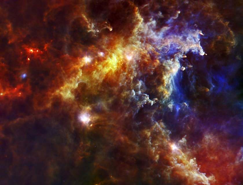 Baby stars in the Rosette Nebula