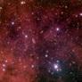 WeBo 1, a strange planetary nebula