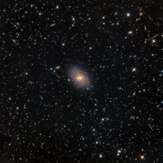 NGC 1169