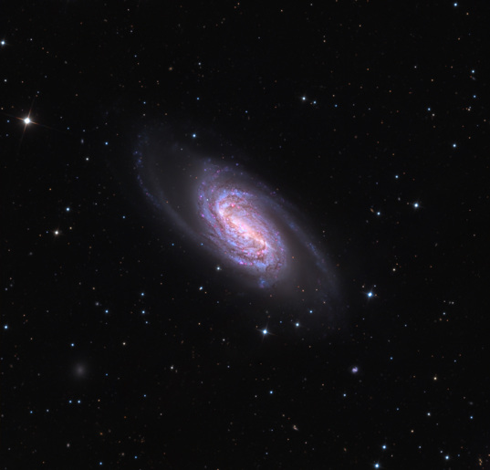 Full view of NGC 2903