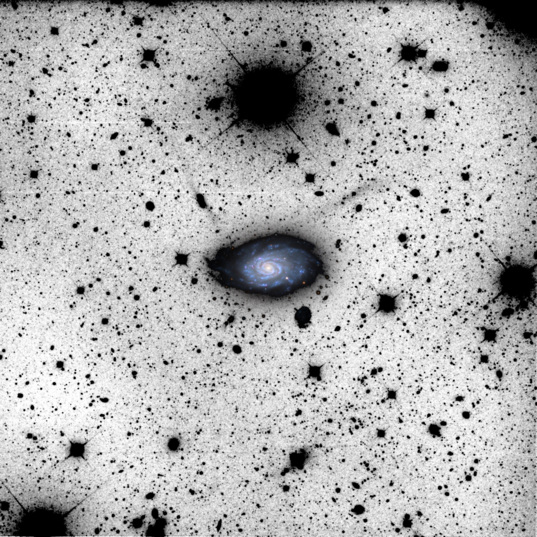 NGC 3614 (inverted)