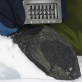 The Antarctic Search for Meteorites