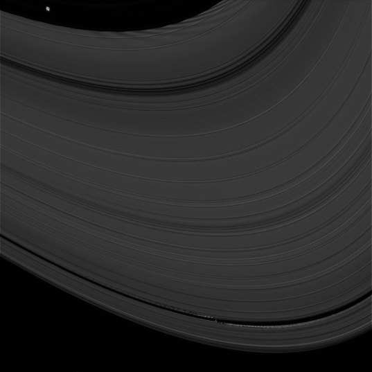 Pan and Daphnis and their ring waves