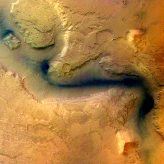 Martian fluids