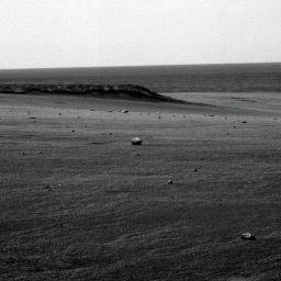 A field of meteors?