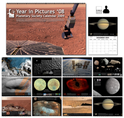 2008 Year in Pictures 2009 calendar