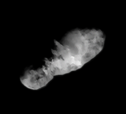 Comet 19P/Borrelly, target of Deep Space 1