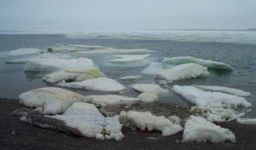 Pack ice in Resolute Bay