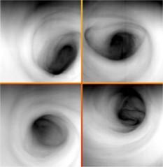 The many faces of Venus' south polar vortex